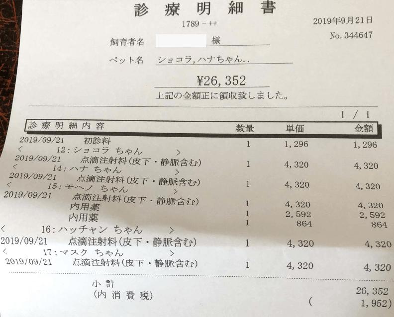 猫ヘルペス 医療費